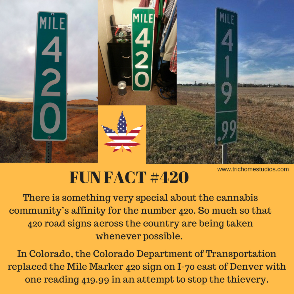 FUN FACT #420:2F5 IG.png