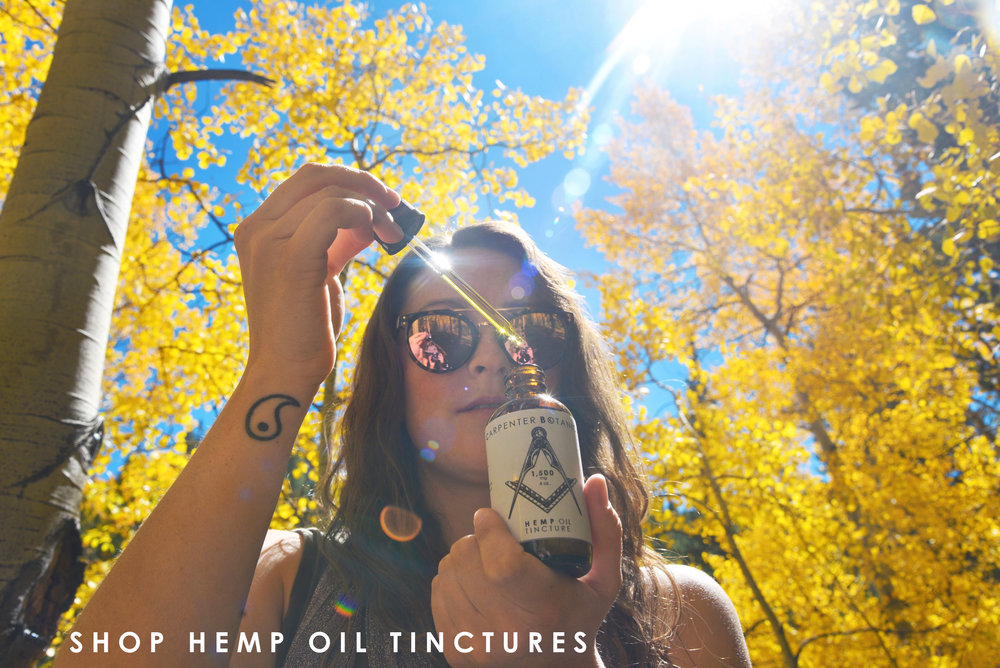 Shop Carpenter Botanicals Hemp Oil Tinctures