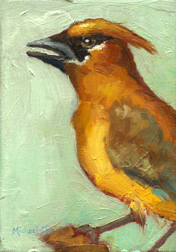 "Golden Chatter   5"" X 7"" $295"