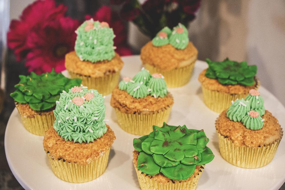 cupcake succulents