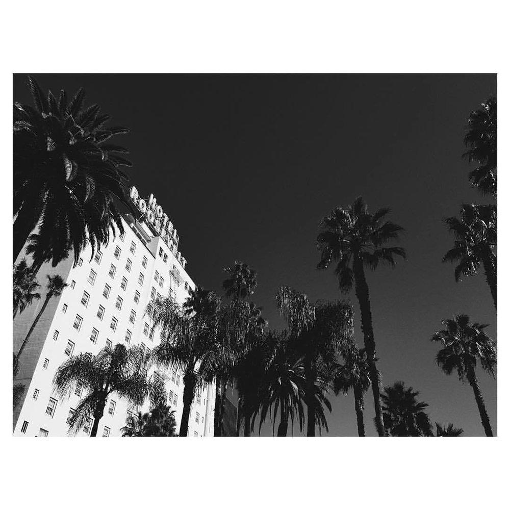 The one and only #roosevelthotel #afifest2015 #la #losangeles #theurbanexpat #bestofvsco #instabest #neveraboringmoment #passionpassport #mytinyatlas #TellOn #vscolosangeles #instalosangeles #vscola #instala #blackandwhite  (at Hollywood Roosevelt Hotel)