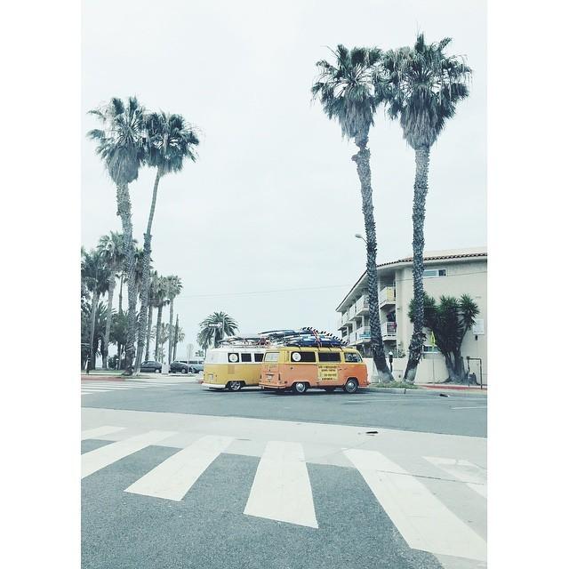 California dreaming #Venicebeach #vsco #vscocam #vscobest #instabest #instagood #instalosangeles #la #losangeles #beachlife #beach #surfing (at Venice Beach  Califonia)