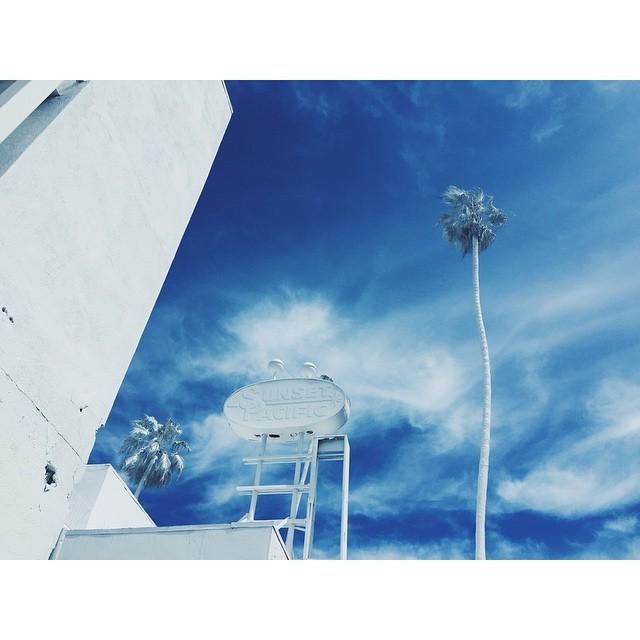 Urban art at its best #sunsetmotel #pleasedonotenter #projectionLA #sunsetpacific #streetart #losangeles #la #urbanart #whiteandblue #palmtrees #reimagined #california #cityofangels #TellOn #vincentlamouroux #batesmotel #instabest #instagood #instalosangeles #vsco #vscocam #vscobest #architecture #urban  (at Sunset Pacific Motel)
