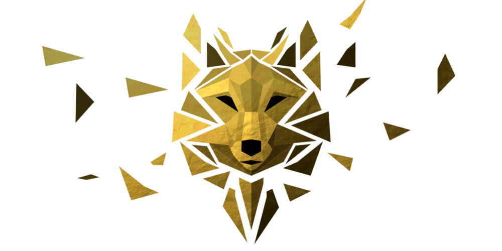 MaskNoType.png