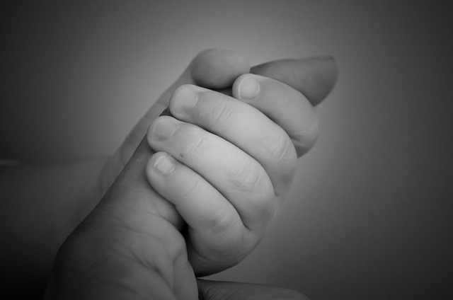 maternal-love-71278_640.jpg