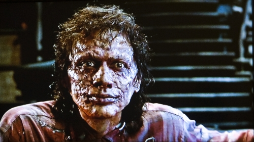 The Creative Genius of Director David Cronenberg - Fly.jpg