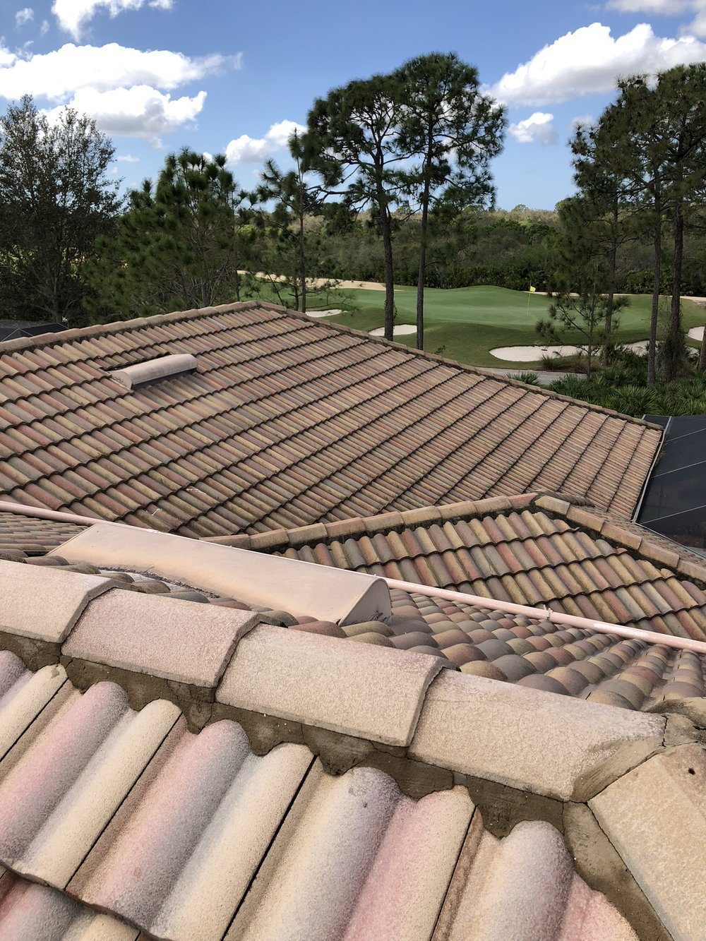 Before -  Washing Tile Roof