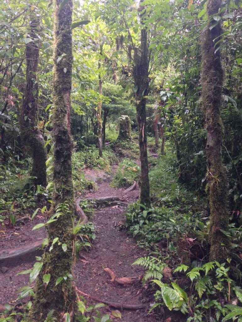 extreme-hike-photo_19016981-770tall.jpg