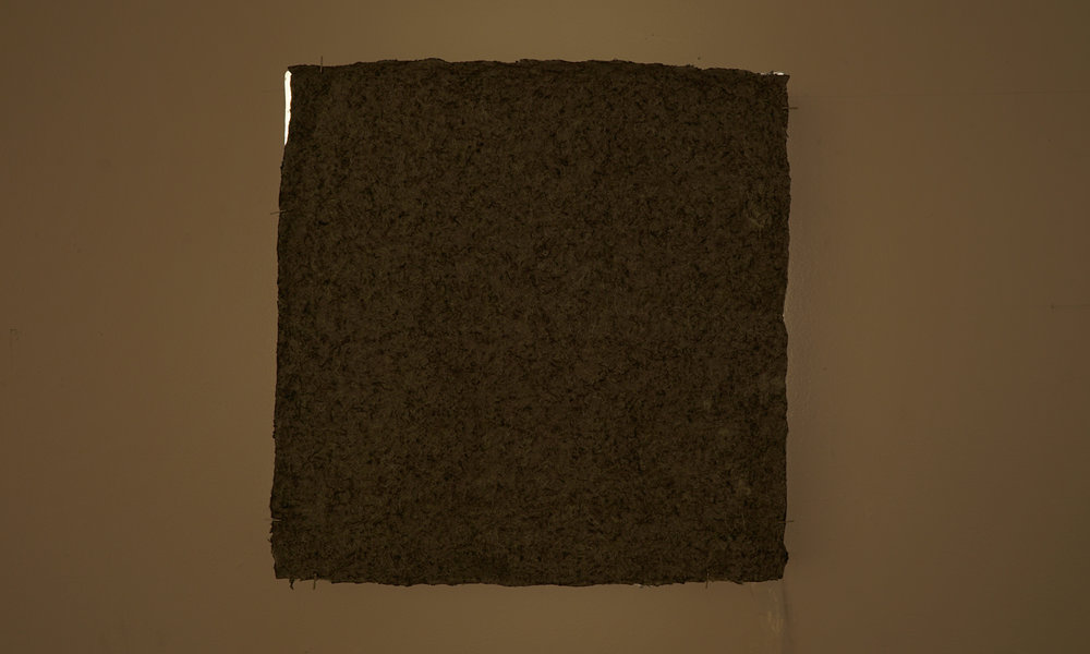 """May 2018. 16""""x16"""" handmade paper from wool, east wall. Olive Tjaden Gallery, Cornell University."""