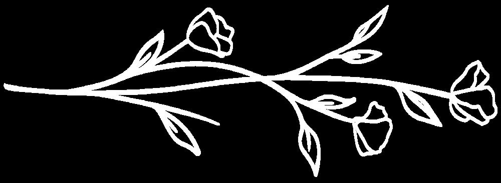 Flower-TransparentBackground-06.png