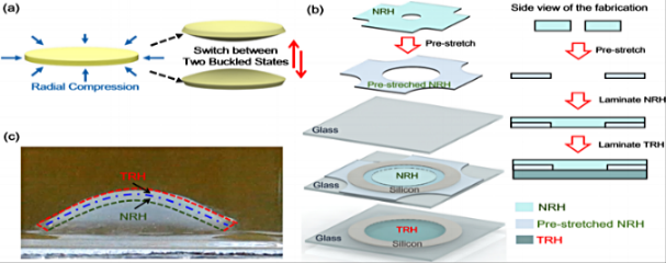 Snap-through hydrogel structure design and synthesis
