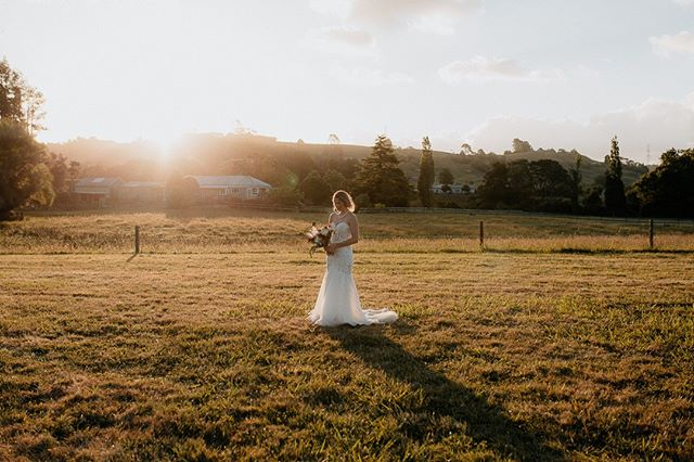 Golden day filled with golden rays yeooooow 💍 . . . . . . #junebugweddings #weddingphotographer #wedding #weddingphotography #theknot #photobugcommunity #bride #weddinginspiration #lookslikefilm #aucklandweddingphotographer #nzweddingphotographer #australianweddingphotographer #love #weddingday #belovedstories #weddinginspo #weddingideas #bridetobe #loveauthentic #authenticlovemag #loveandwildhearts #groom #weddingdress #weddingplanning #weddingwire #sunset #radlovestories #weddingphoto #togetherjournal #benandbethweddings