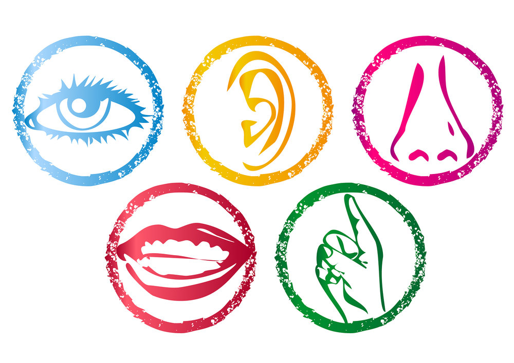 five-senses.jpg