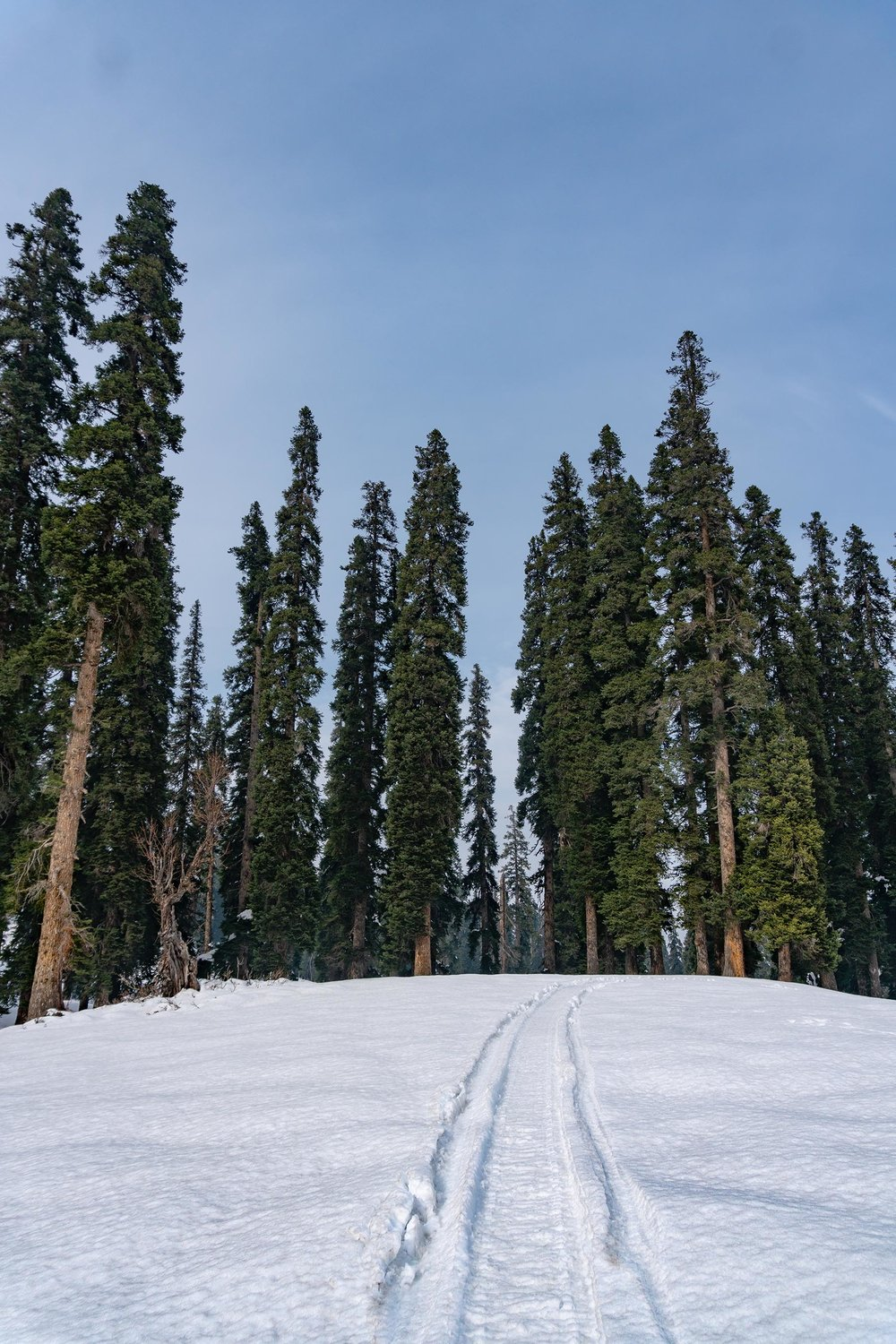 Gulmarg-Submission-6.jpg