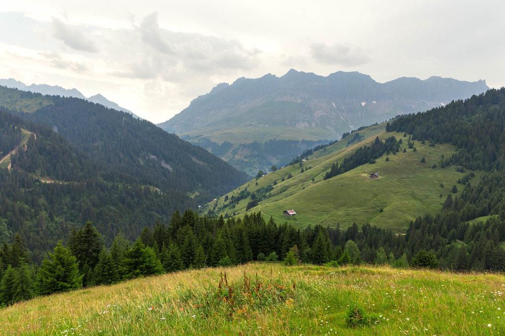 Chalet Alpage Summer - Reportage Photo - Victor Perez - Atelier VE-5.jpg