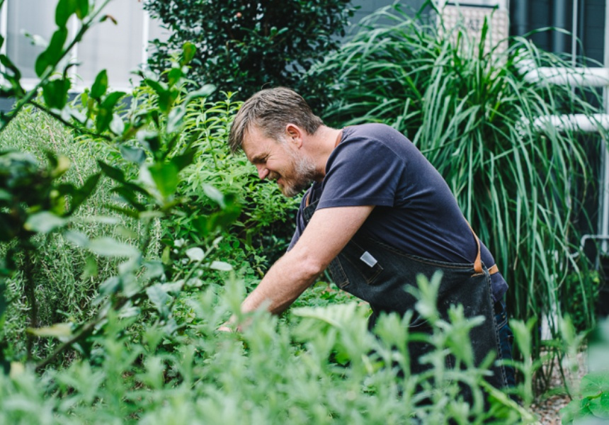 Kitchen gardens are springing up at restaurants and cafes across Sydney. - SYDNEY MORNING HERALD