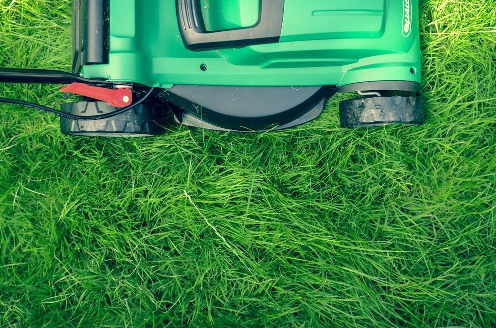 Studier viser at hagearbeid er bra for både den fysiske og den psykiske helsa vår. Ungdomsbedriften Garden Switch ønsker å gi også dem som ikke har egen hage mulighet til å dyrke og stelle i en.