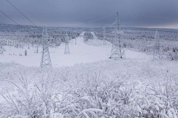 Arctic Grid.jpg