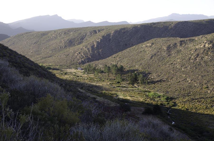 Dawn at Keurbosfontein, Cederberg (before)
