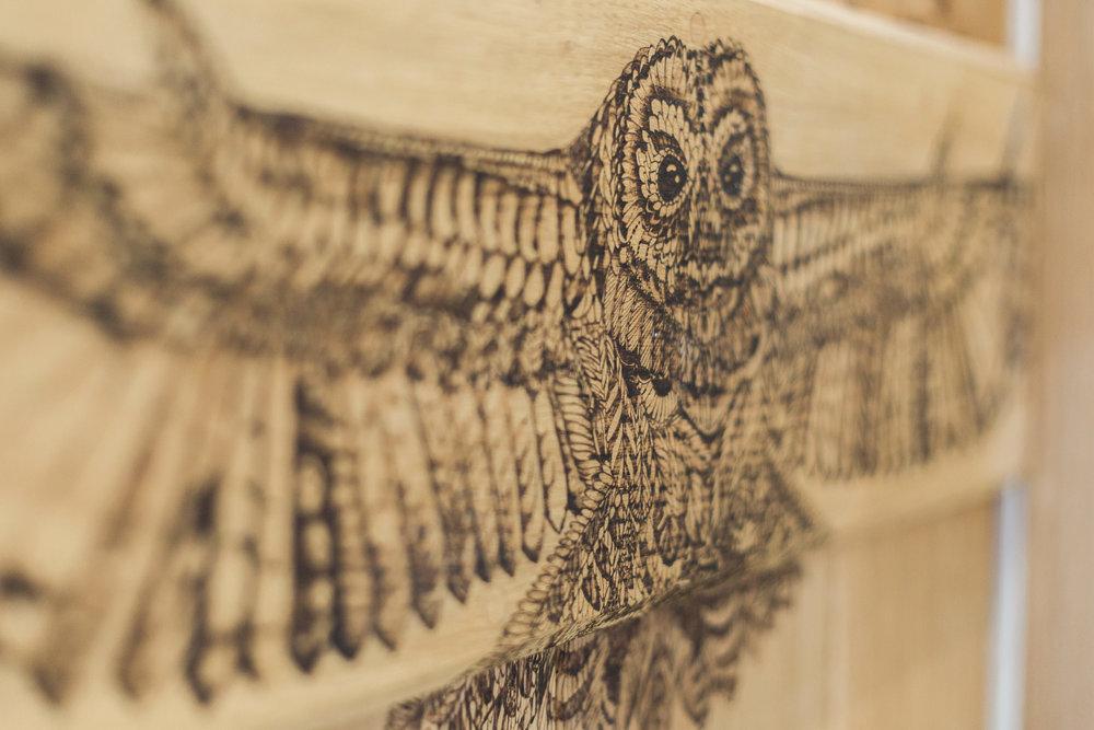 Pyrography tawny owl on oak door