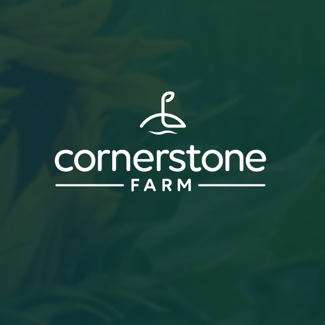 Cornerstone-Header_darker.jpg