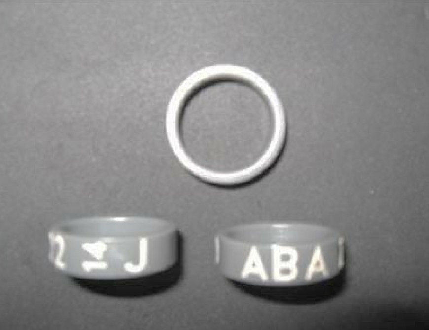 ABA Legband Program — American Bantam Association