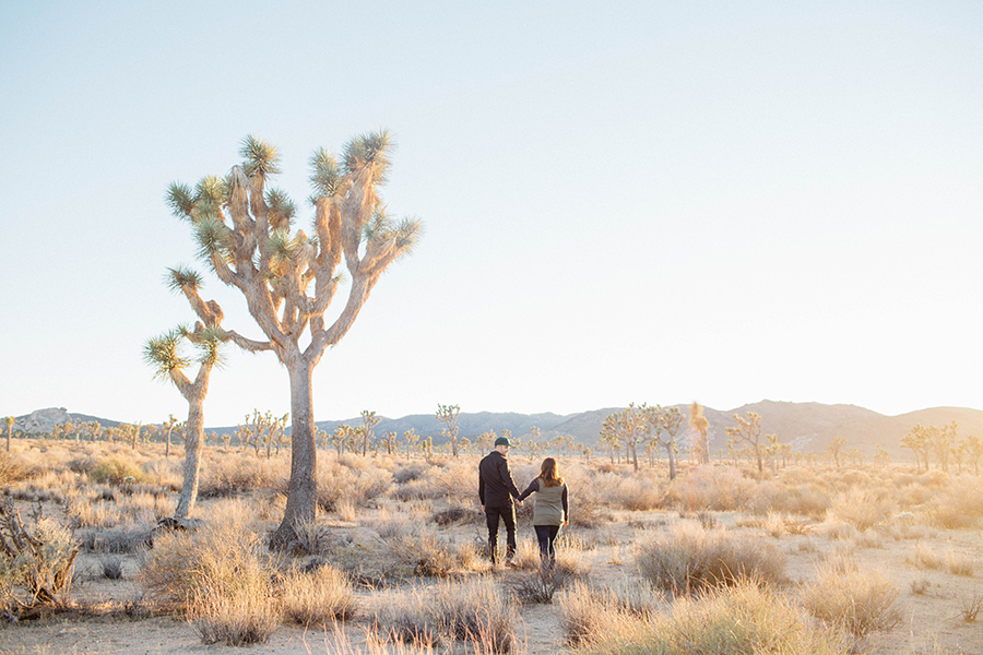 JoshuaTree_Engagement_Stephanie&Schyler_032