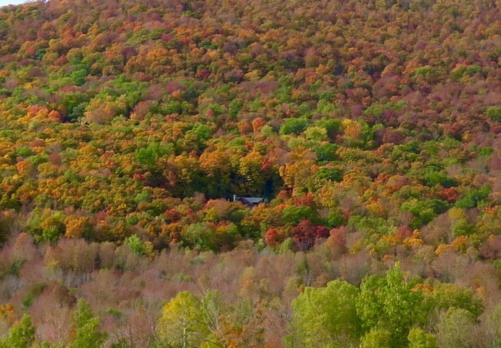 Dorset, Vermont October 2016