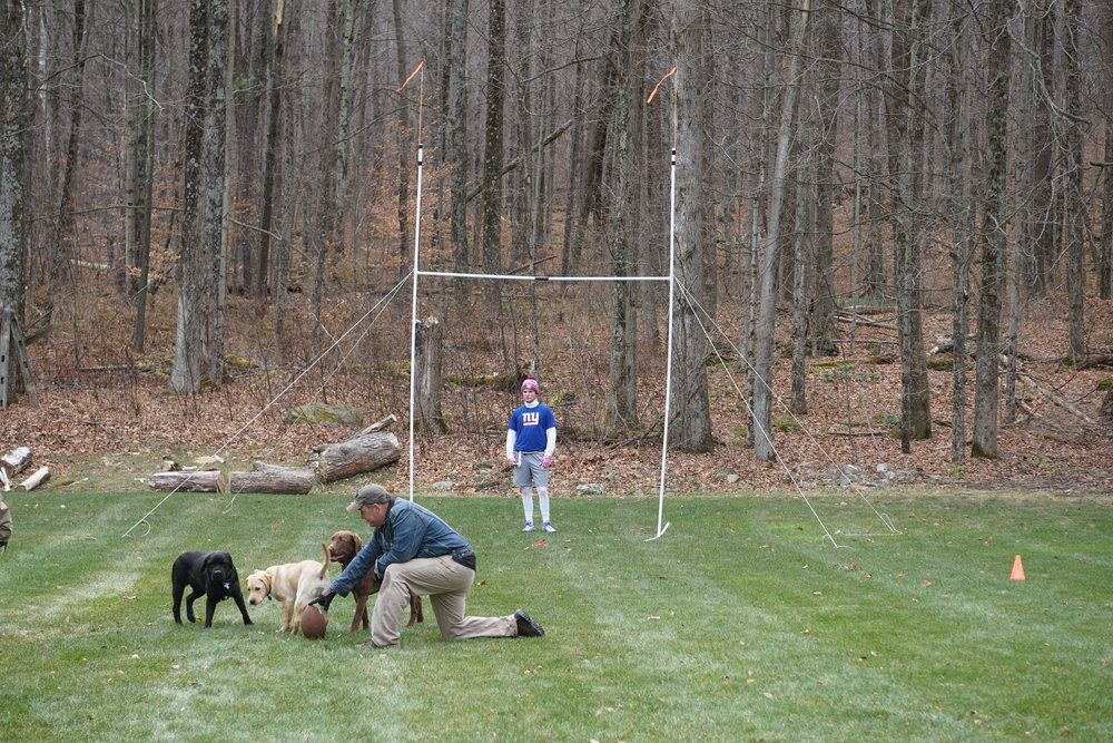 The purpose of the new goal post was a little confusing to the canine team.