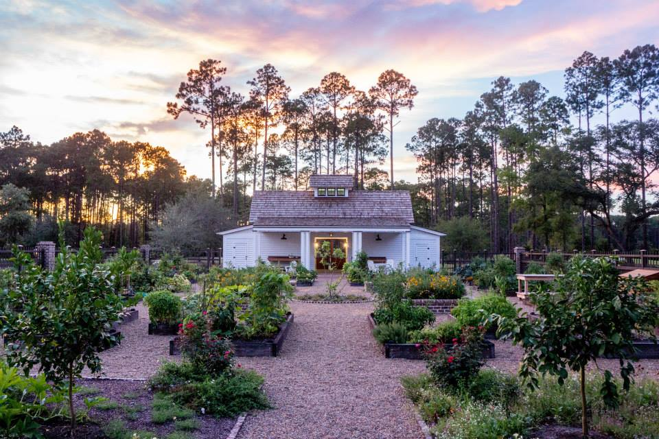 Photo of a garden in Palmetto Bluff by brother-in-law Phil Doetzel, who is both an amazing chef and a even more amazing photographer!