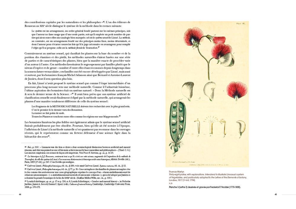 Rousseau20.jpg