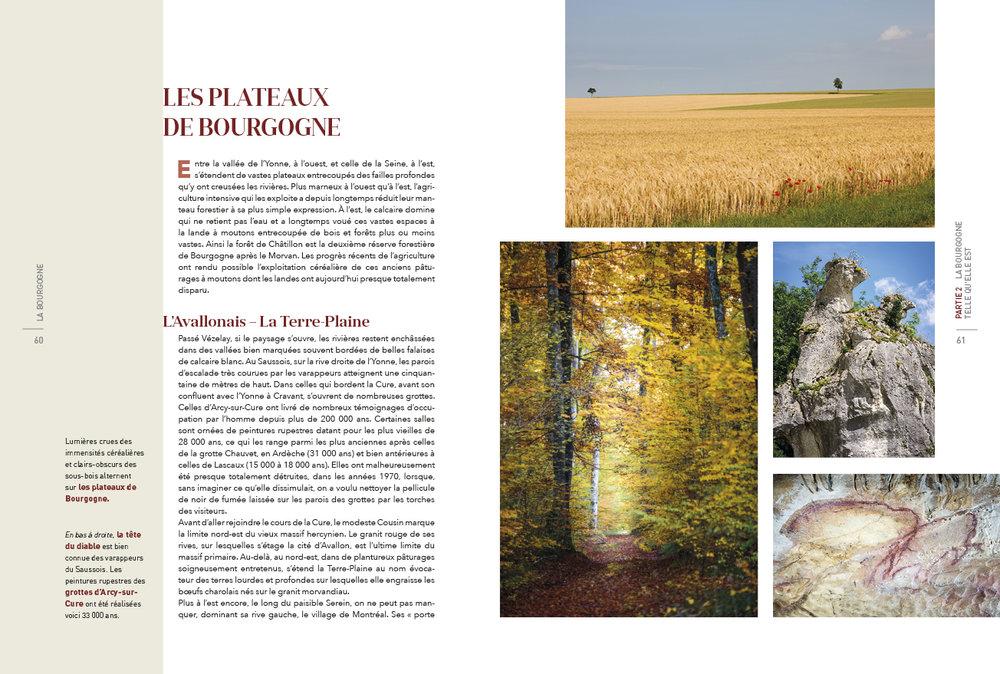 Bourgogne-Cornaille16.jpg