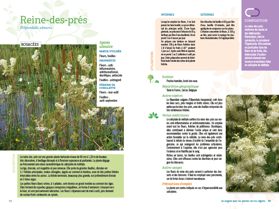 SeSoignerPlantesRégion-110plantes-BAT12.jpg