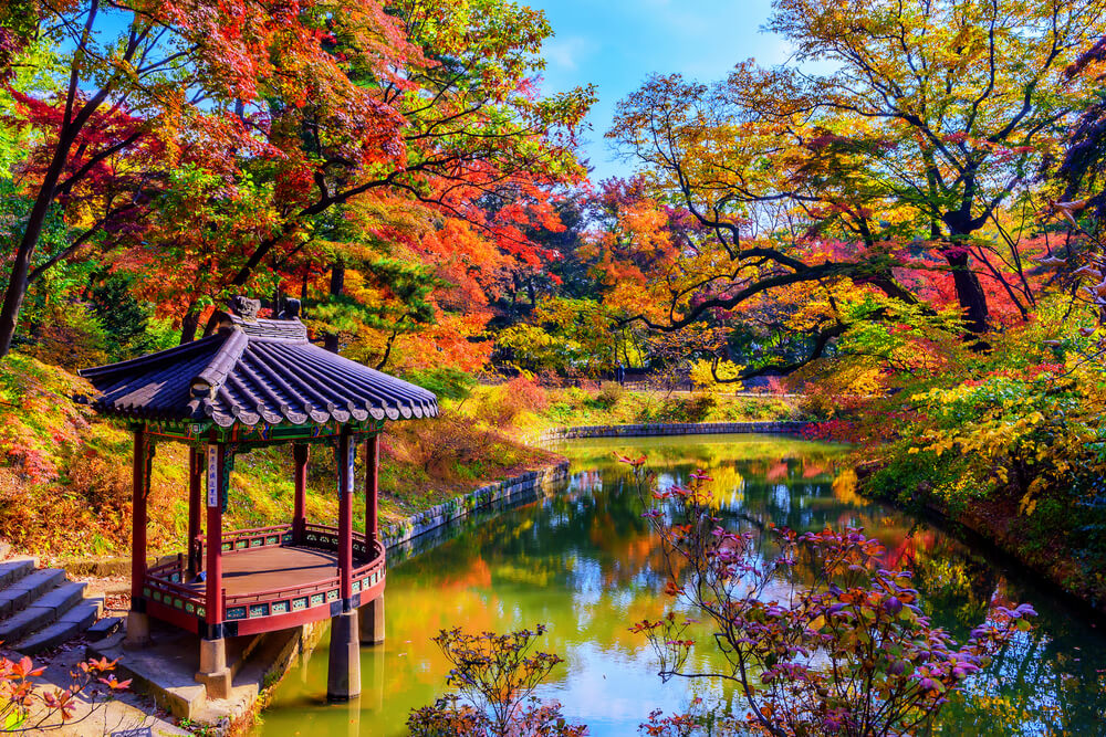 Secret Garden, Changdeokgung Palace  Photo Credit: Shutterstock