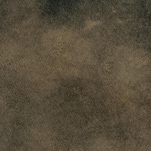 W58379 - Woodchuck
