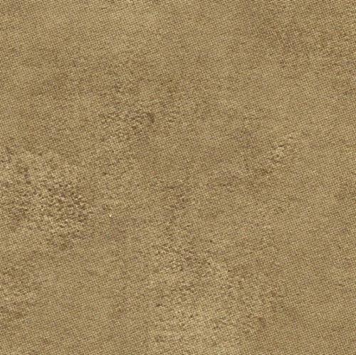 W58753 - Michelangelo