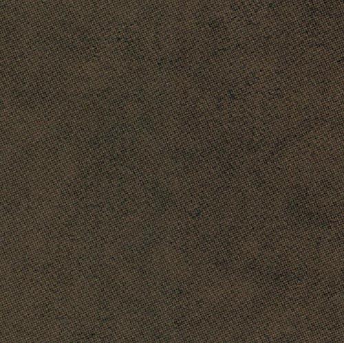 W58755 - Giotto