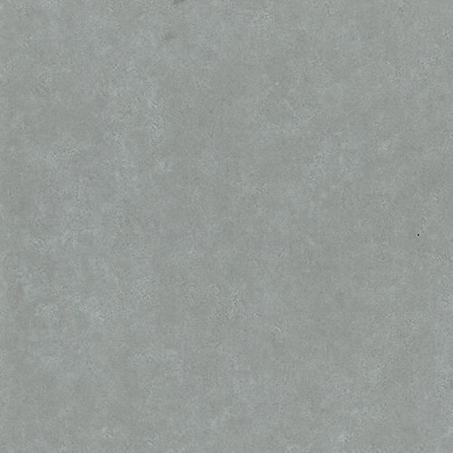 58895 - Gull