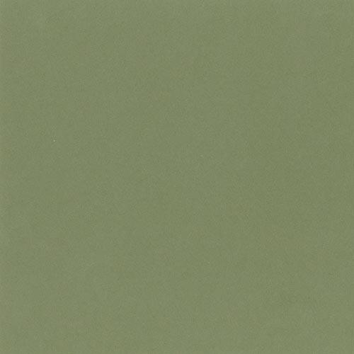 664 - Oak Leaf C-W