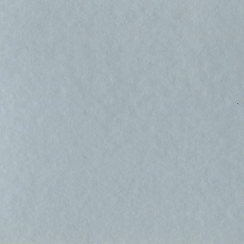60490 - Rubbed Silver C-W