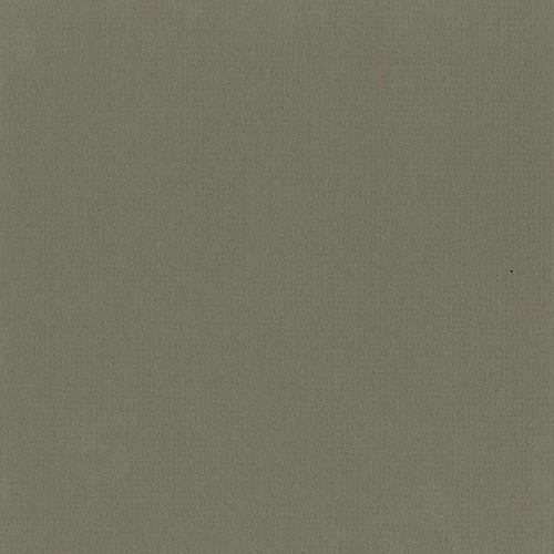 W660 - Southern Moss