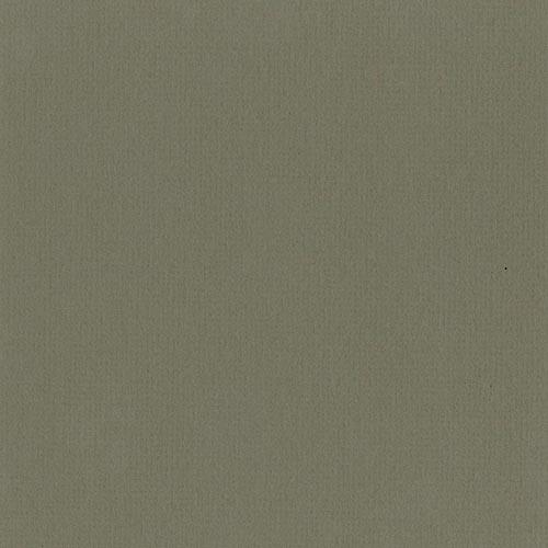 B660 - Southern Moss