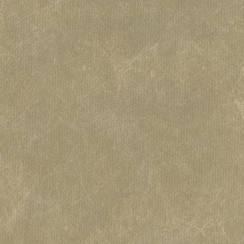 58801 - GOLDEN SAND
