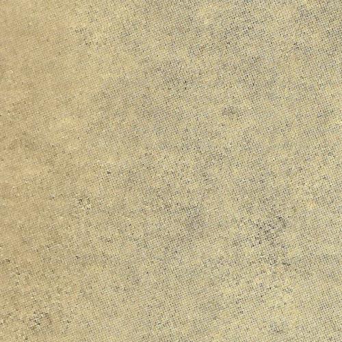 58753 - Michelangelo W-B
