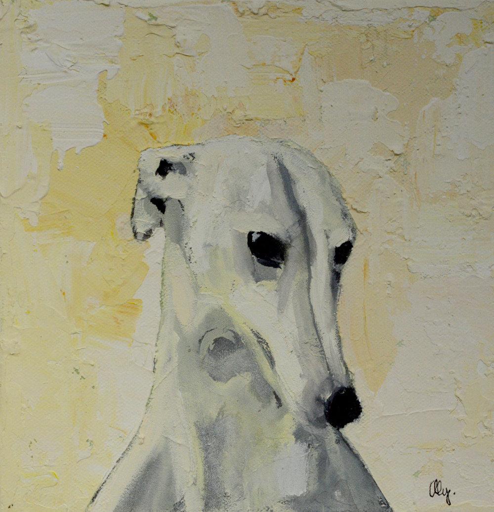 Greyhound 8x8