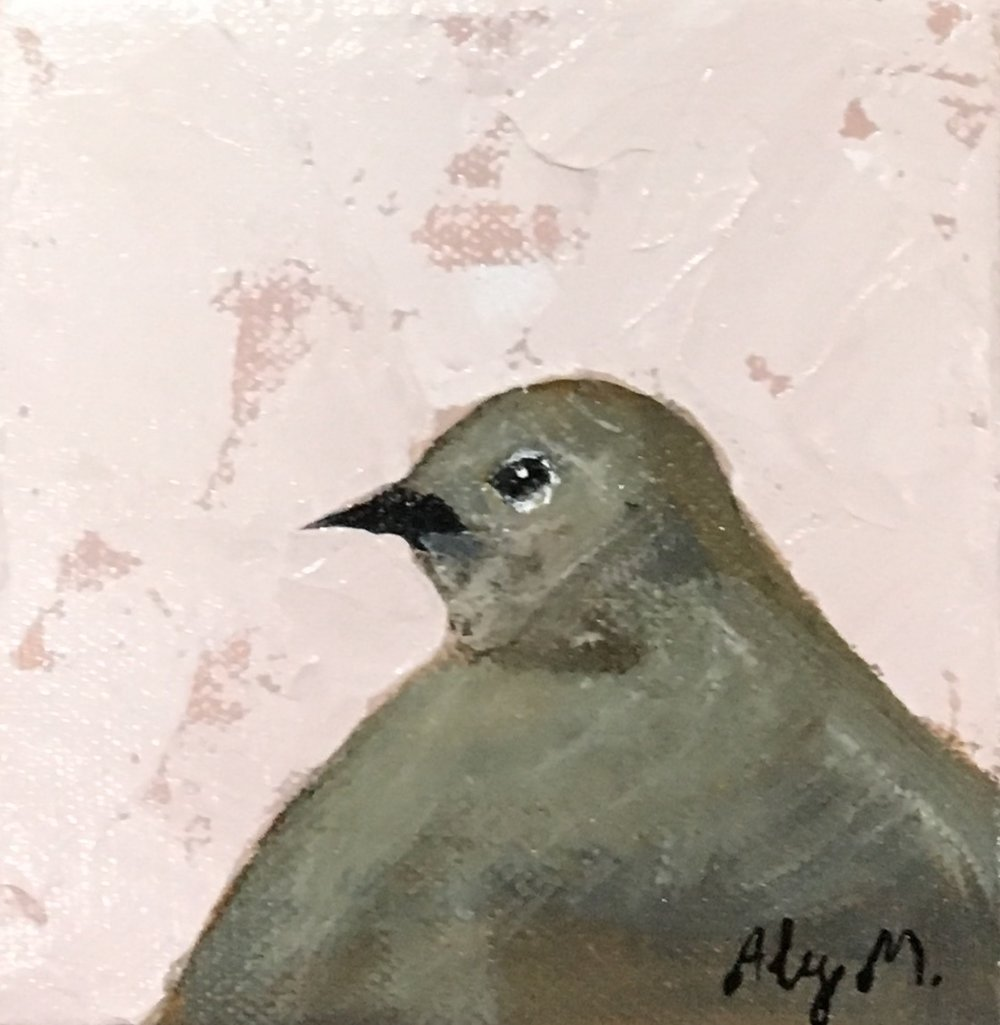 Mourning Dove I|