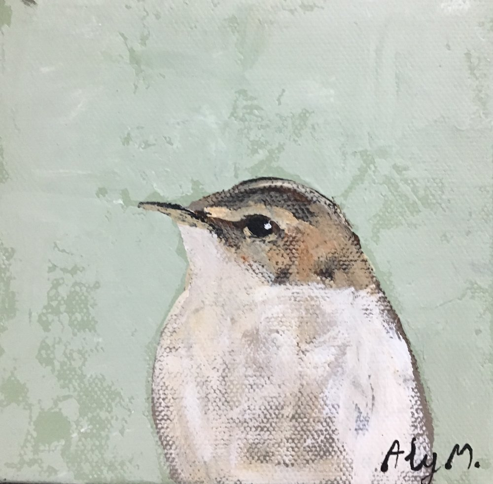 Little Sparrow|4x4