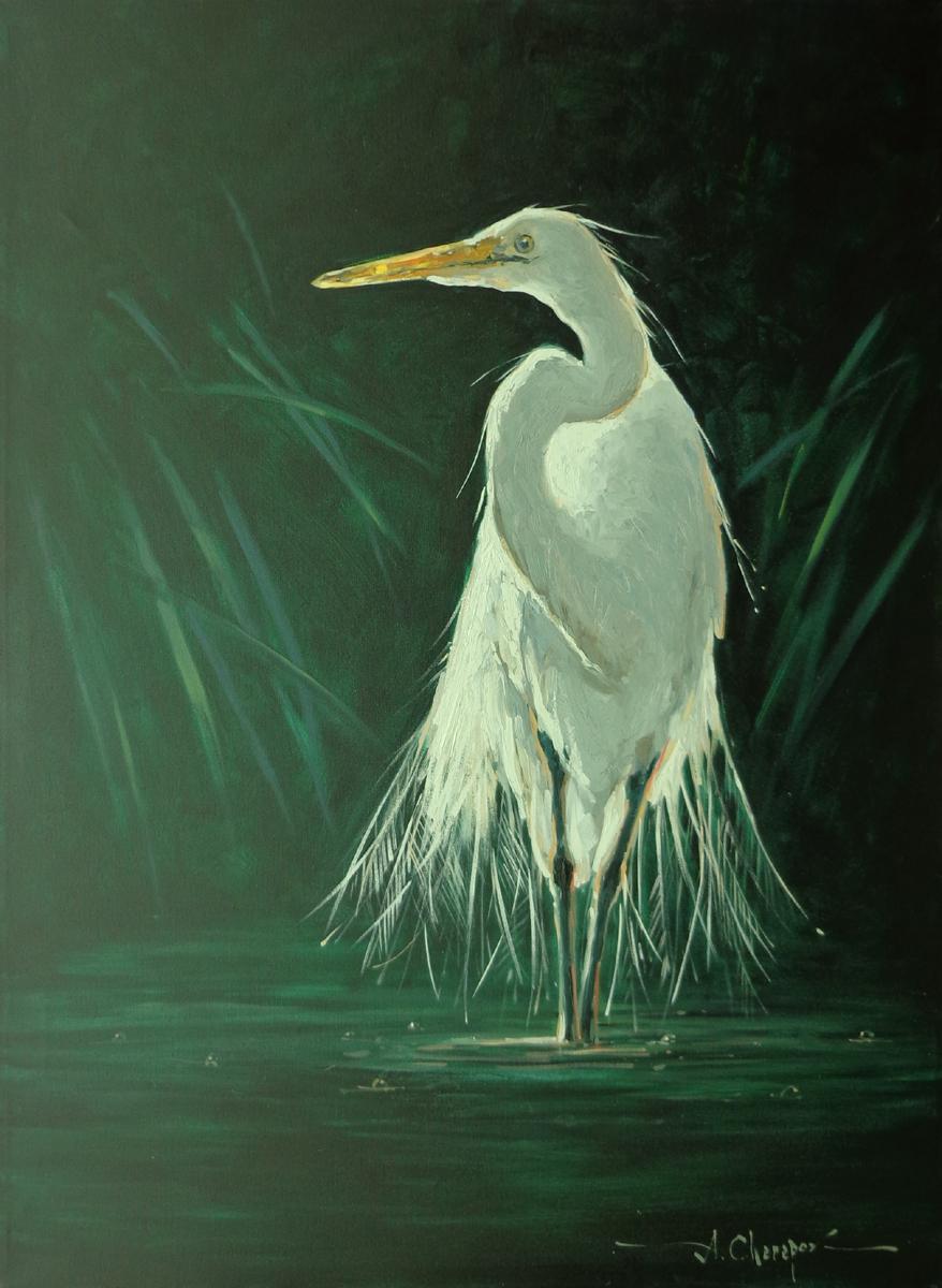 White Egret II|30x40
