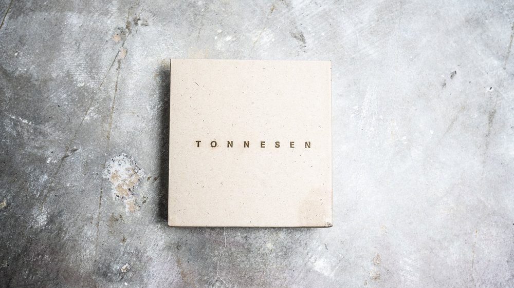 Tonnesen Book: 12 months to Fame and Fortune in the Art World.