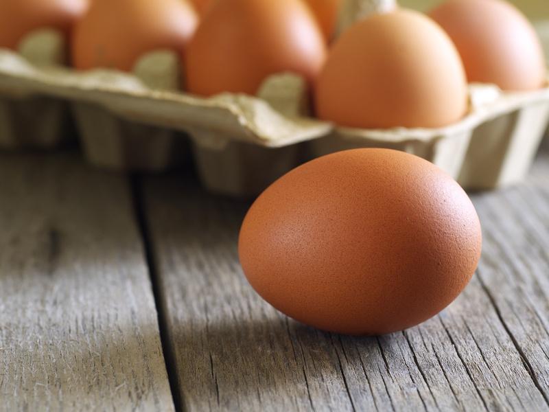 eggs © asadykov.jpg